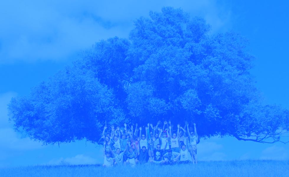 arvore-azul-menor